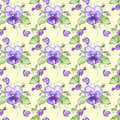 Illustration in watercolor of a pansy flower. Floral card with flowers. Botanical illustration seamless pattern.