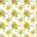 Illustration in watercolor of a Sunflowers. Floral card with flowers. Botanical illustration seamless pattern.