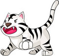 Illustration White Tiger vector Royalty Free Stock Photos