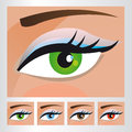 Illustration womans eyes different colors vector Royalty Free Stock Image