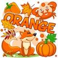 Illustrations of orange color