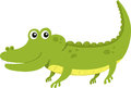 Illustrator of alligator aligator font a alphabet Royalty Free Stock Images