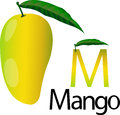 Illustrator m font with mango Royalty Free Stock Photo