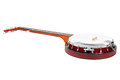 Image banjo under white background Stock Image