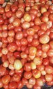This is an image of beautiful tomato.