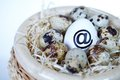 Image of big egg with ï  atï   sign and smaller ones in nest Royalty Free Stock Photo