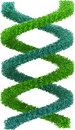 Image of blue and green dna strand isolated on w d rendered against white background Royalty Free Stock Photography