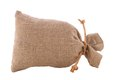 Image burlap sack tied Royalty Free Stock Photo