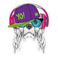 The image of Cocker Spaniel in the glasses, headphones and in hip-hop hat. Vector illustration.