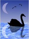 Image de nuit silhouette d un cygne sur la surface de l eau avec la réflexion de la lune Image stock