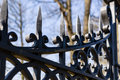 Image of a decorative cast iron fence. Royalty Free Stock Photo