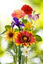 Image of flowers in the garden Royalty Free Stock Photo