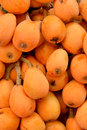 Image of fresh loquat fruit raw and shown as raw and healthy or agriculture concept Royalty Free Stock Photo