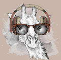 The image of the giraffe in the glasses and headphones. Vector illustration.