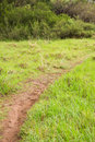 Image of a greenness hiking path Royalty Free Stock Photo