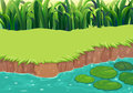 An image of a pond illustration Stock Image