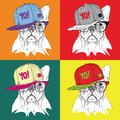 Image Portrait of dog in the glasses and in hip-hop hat. Pop art style vector illustration.