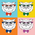 Image Portrait of owl in the cravat and with glasses. Pop art style vector illustration.