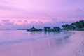 Image showing palm beach in aruba at sunset Royalty Free Stock Image
