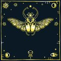 Image of the stylized bug Goliath, a decorative frame, space symbols. Esoteric, mysticism, occultism.