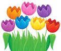 Image with tulip flower theme eps vector illustration Stock Image