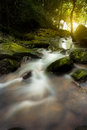 An Image of waterfall in the morning with sun rays Royalty Free Stock Photo