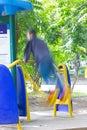 Imagem borrada de um homem que exercita no equipamento em um parque em tailandês Imagens de Stock