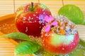 Imagem da sobremesa maçãs de doces fotos conservadas em estoque Fotos de Stock