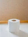 Imagen de solos rollos del papel higiénico Imágenes de archivo libres de regalías