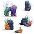 Images of sea stones with algae