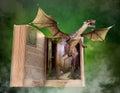 Imagination, Reading, Book, Story, Storybook