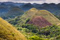 Img xs jpg chocolate hills bohol island philippines Royalty Free Stock Photos