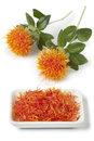 Imitation saffron dish with from safflower on white background Royalty Free Stock Photo