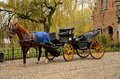 Immaculate horse and carriage brugge belgium a beautiful brown hitched to a four wheel in condition in the background is a body of Royalty Free Stock Photography