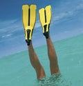 Immersione subacquea Fotografia Stock