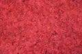 Impasto Red Background Texture Royalty Free Stock Photo