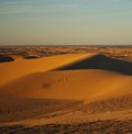 Imperial San Dunes Royalty Free Stock Photo