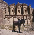 The imposing monastery in petra jordan with at foreground a donkey Royalty Free Stock Photos