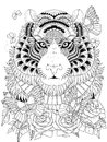 Imposing tiger adult coloring page Royalty Free Stock Photo