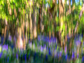 Impressionist Image Of A Blueb...