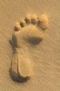 Imprint of human feet on sandy beach Royalty Free Stock Photo