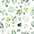 Seamless pattern with imprints of green leaves on a white background.