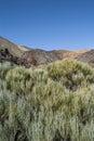 Inactive volcano tenerife canaries spain rocks sand bushes el teide national park Royalty Free Stock Photography