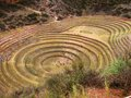 Inca terraces of Moray, Peru Stock Image