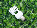 Incandescence light bulb on artificial grass green concept Royalty Free Stock Images