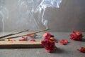 Incense stick. Aromatherapy Royalty Free Stock Photo