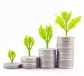 Increase your savings for success concept Stock Photos