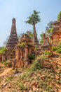 Indein inle lake ancient stupas at overgrown with plants myanmar Royalty Free Stock Photography