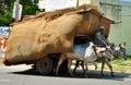 Indian bullock cart Royalty Free Stock Photo