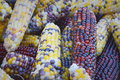 Indian corn background grouping at the dane county farmer s market in madison wi Stock Images